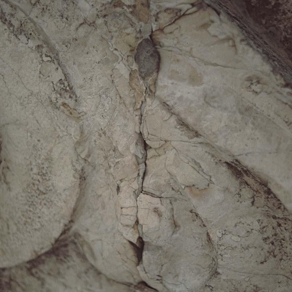 Arche-Restauri_Parma_1991-LaVittoria-20